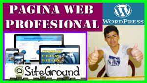 Cómo Crear Una Página Web Profesional en WordPress Paso a Paso Fácil y Seguro 2020